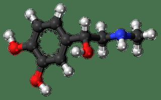mee-eters door hormonen